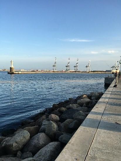 Biochemie Praktikum in Dänemark