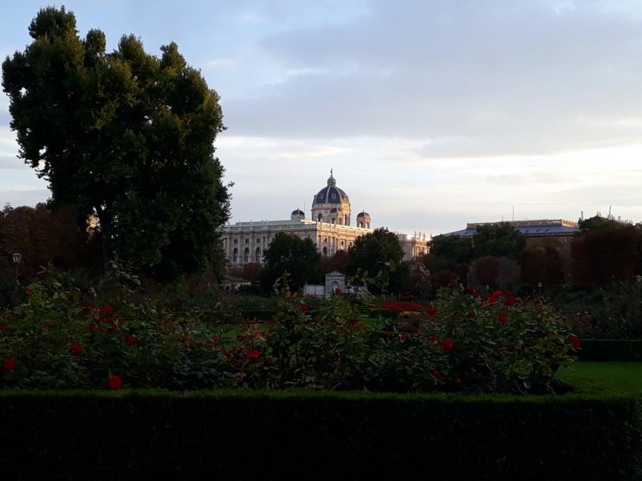 Biologie Praktikum in Wien