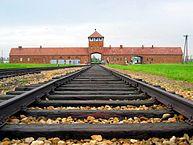 193px-Auschwitz-birkenau-main_track