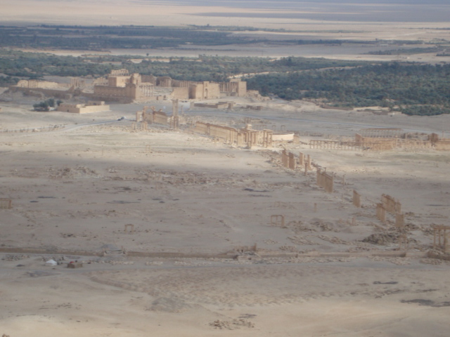 Palmyra von Oben
